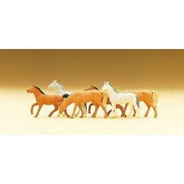 6 chevaux