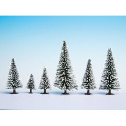 Quelques arbres enneigés